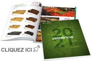 Catalogue PROLINEA 2021